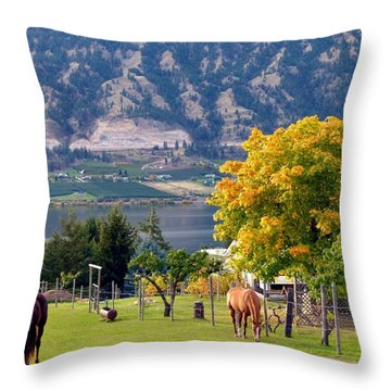 Days Of Autumn 25 Throw Pillow