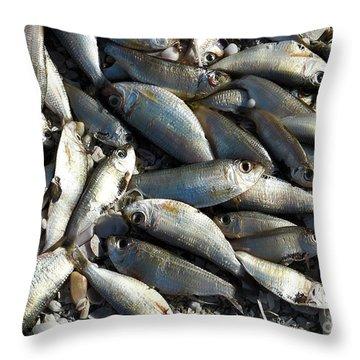 Dead Fish Throw Pillow