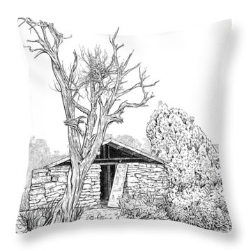 Decay Of Calamity The Half Life Of A Dream Black And White  Throw Pillow