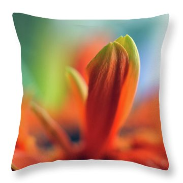 Throw Pillow featuring the photograph Decision by Michelle Wermuth