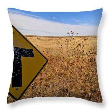 Throw Pillow featuring the photograph Decision Time by Carl Young