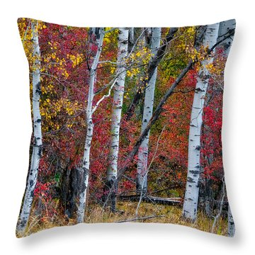 Deep Aspens Throw Pillow