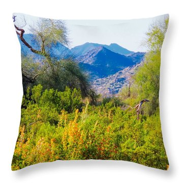 Deep Desert Valley In A Sonoran Desert Spring Throw Pillow
