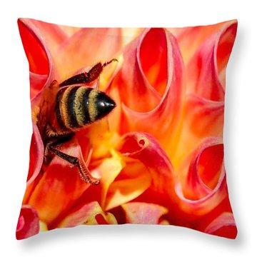 Deep Dive Throw Pillow