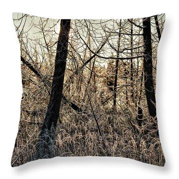 Deep Frost Throw Pillow