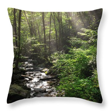Deep In The Forrest - Sun Rays Throw Pillow