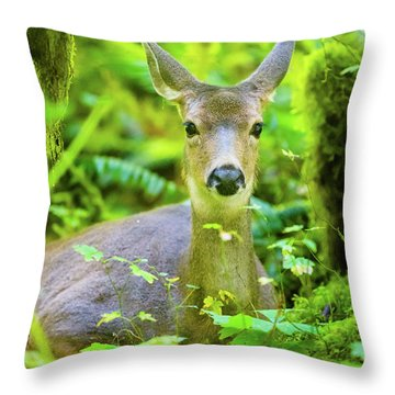 Deer In Rainforest 2 Throw Pillow