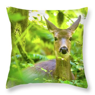 Deer In Rainforest 3 Throw Pillow