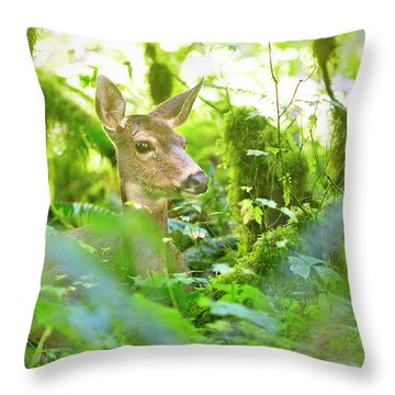 Deer In Rainforest 4 Throw Pillow
