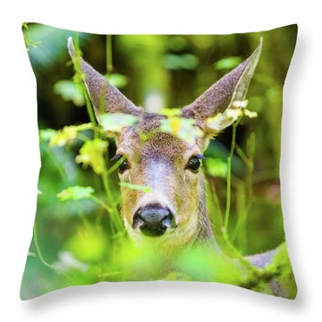 Deer In Rainforest Throw Pillow