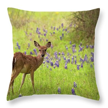 Deer In The Bluebonnets Throw Pillow