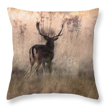 Deer In The Grasses Throw Pillow