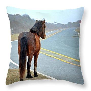 Delegats's Pride Looking For Visitors To Assateague Island Throw Pillow