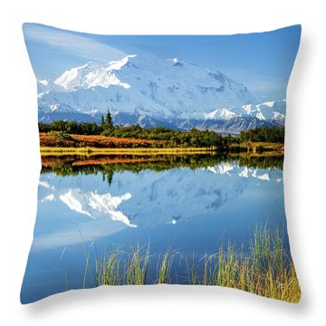 Throw Pillow featuring the photograph Denali Reflection by Tim Newton