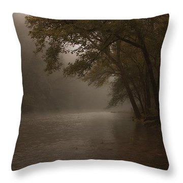 Depth Of Solitude  Throw Pillow