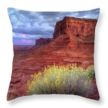 Desert Bouquets On A Stormy Eve Throw Pillow