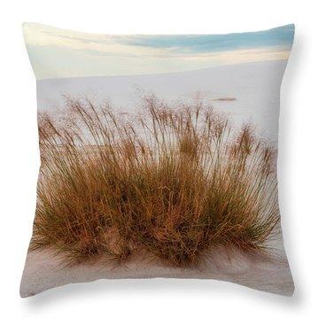 Throw Pillow featuring the photograph Desert Dwelling by Rick Furmanek