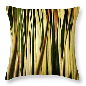 Throw Pillow featuring the photograph Desert Grasses I by Leda Robertson