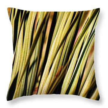 Throw Pillow featuring the photograph Desert Grasses II by Leda Robertson