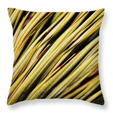 Throw Pillow featuring the photograph Desert Grasses IIi by Leda Robertson