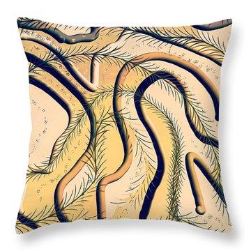 Desert Map Throw Pillow