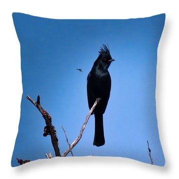 Desert Phainopepla And Dragonfly Throw Pillow