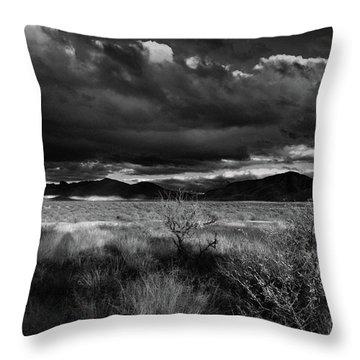 Desert Shadow Moods Throw Pillow