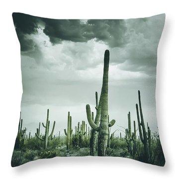 Desert Storm In Arizona Throw Pillow