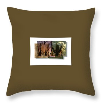 Throw Pillow featuring the photograph Desert Suite No 3 by Mark Shoolery