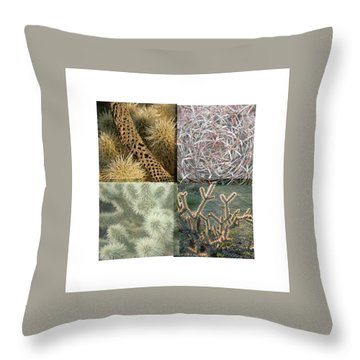 Throw Pillow featuring the photograph Desert Suite No 5 by Mark Shoolery