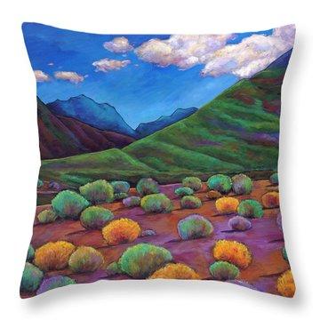 Desert Valley Throw Pillow