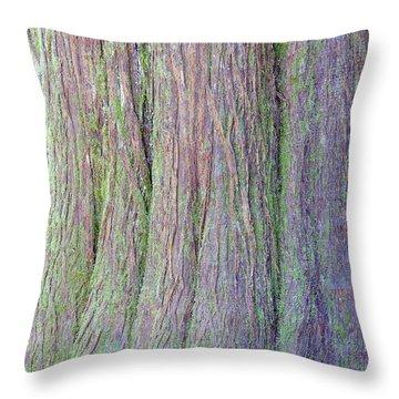 Details, Old Growth Western Redcedar Throw Pillow