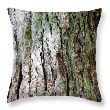 Details, Old Growth Western Redcedars Throw Pillow
