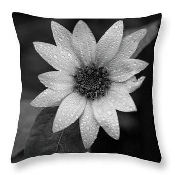 Dewdrops On A Sunflower Throw Pillow
