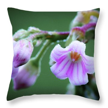Dewy Dogbane #1 Throw Pillow