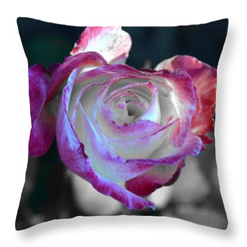 Throw Pillow featuring the photograph Dewy Rose by SimplyCMB