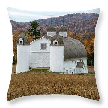 Dh Day Farm 13 Throw Pillow