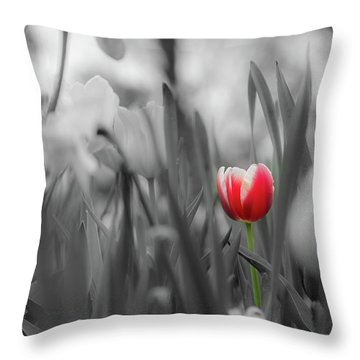 Throw Pillow featuring the photograph Different by Dheeraj Mutha
