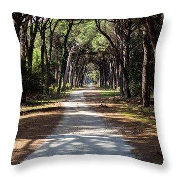 Dirt Pathway In A Mediterranean Pine Forest Throw Pillow