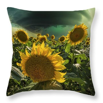 Throw Pillow featuring the photograph Disarray  by Aaron J Groen