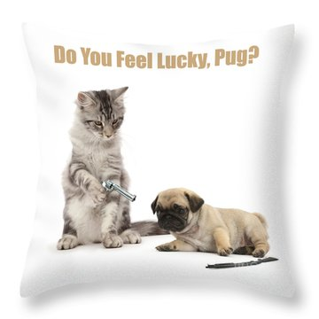 Throw Pillow featuring the photograph Do You Feel Lucky, Pug by Warren Photographic