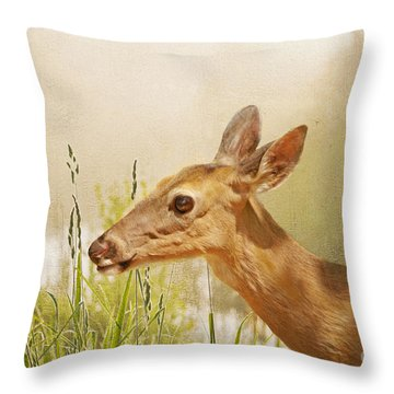 Doe At Dawn Throw Pillow