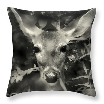 Doe's Summer Portrait Throw Pillow