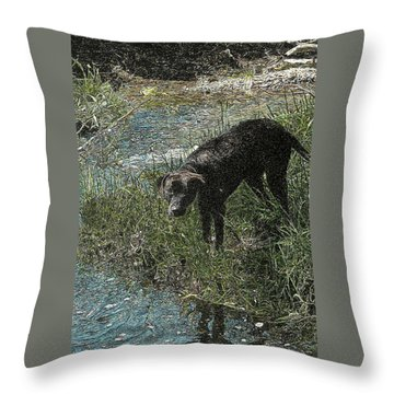 Dog By The River Bank Throw Pillow