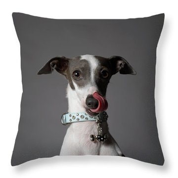 Dog Throw Pillows Fine Art America