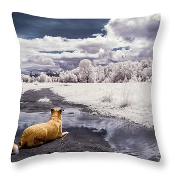 Doggy Daydream Throw Pillow