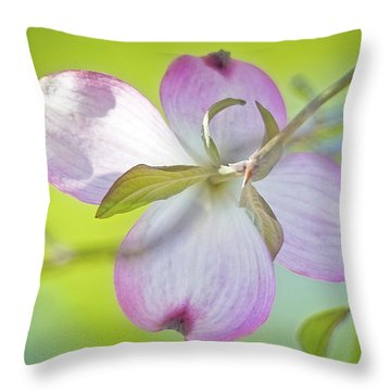 Dogwood Blossom In Spring Throw Pillow