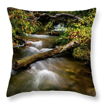Throw Pillow featuring the photograph Dogwoods Along The Provo Deer Creek by TL Mair