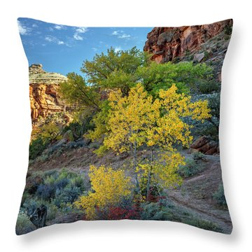 Dominguez Gold Throw Pillow