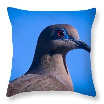 Don't It Make My Brown Eyes Blue Throw Pillow